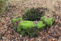 Hluboké studny