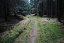 Cesta ze skal na Záboř. Ještě před padesáti lety vedla přes rozsáhlé louky...