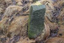 Hraniční kámen. Kdysi vymezoval zábořské pastviny.