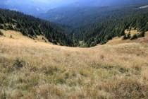 U pramene Moravy - zdejší lavinová dráha