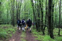 Cesta na Bígr - většinou se šlo přes poměrně nezajímavý les