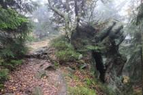 Vrchol Žaltman na hlavním hřebeni Jestřebích hor