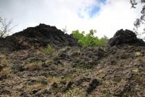 Reliéf v rezervaci je členitý, na několika místech jsou i rozsáhlejší skalní stěny