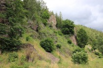 Rezervace Kruczy Kamień - skalnaté stepi a suťoviště jsou přirozeným biotopem jasoně