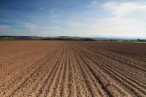 Zemědělská krajina u Nahořan