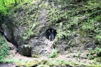 V soutěsce je několik jeskyní