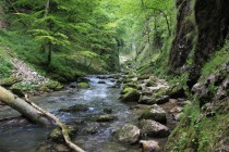 Soutěska řeky Galbeny