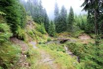 Dobytčí potok přechází stezka po dvou můstcích