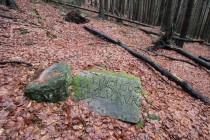 Hradiště - staré hraniční kameny