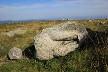 Tělo kamenné orlice, která kdysi z mohyly shlížela do německého Slezska