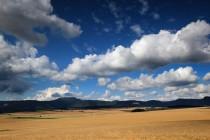 Mám rád krajinu Kladské kotliny nad Radkovem. Cesty s alejemi a mírně zvlněné pláně s obilnými poli, které se táhnou od Stěnavy až k úpatí Stolových hor.