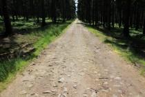 Na věčnosti - nejdelší lesní cesta ve střední Evropě...