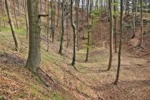 Těžbou zlata vznikl na svazích Bártova lesa mohutný kráter, na jehož dně byl v provozu hlubinný důl.