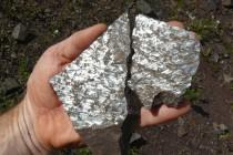 Rožmitál - lom, tektonické zrcadlo P1070328 2