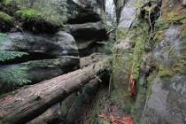 Supí skály - hranice a kameny IMG_1780