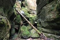 Teplická jeskyně se nachází v jedné z mnoha zcela neprostupných soutěsek Teplických skal. Tato bývá někdy označována jako Wichtrejův příkop.