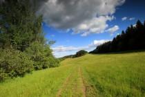 Cestou na Brendy. Hlavní hřeben Jestřebích hor je převážně zalesněný, výjimku představují louky v okolí malebné osady Brendy - Paseky.