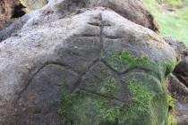 Jeden z kamenů ukrýval i pozdrav z dalekých krajů...