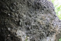 Skalky tvoří permokarbonský ostrohranný slepenec