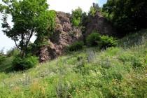 Suťoviště pod lávovým příkrovem Krkavčí skály s nektarodárnými bylinami