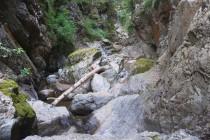 V kaňonu Valea lui Stan